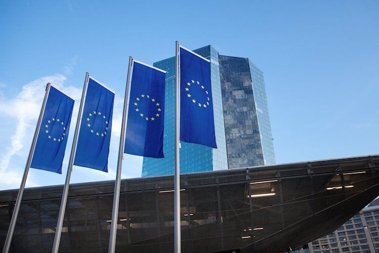 ECB's Lane: Euro's rise dampens inflation outlook