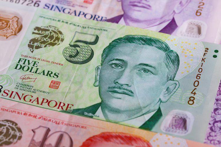 different singapore dollar banknotes 54030770 Large