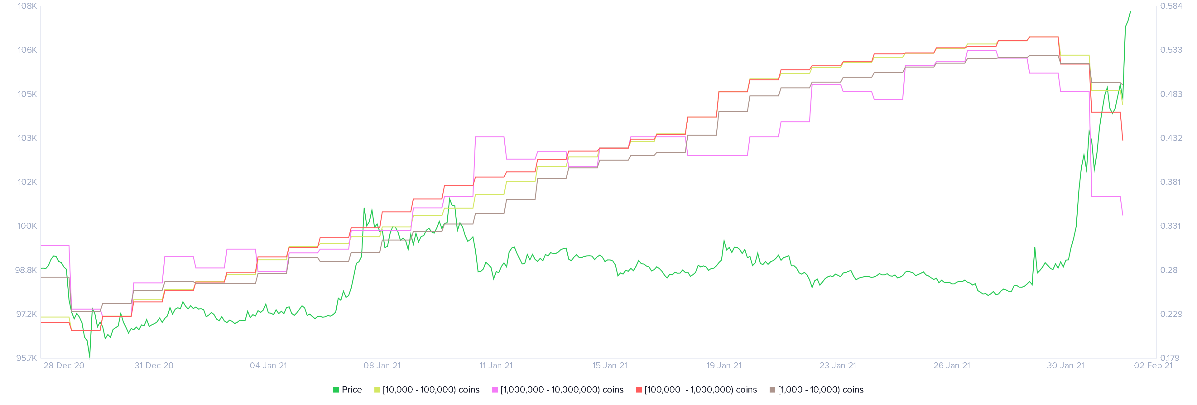XRP Whale Holders Distribution chart