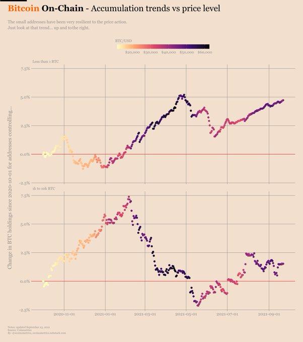 Bitcoin on-chain accumulation trend vs. price level